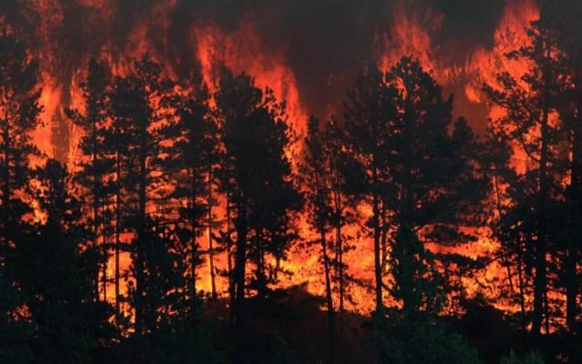 Incendio en Montana provoca evacuación de parques de acampar