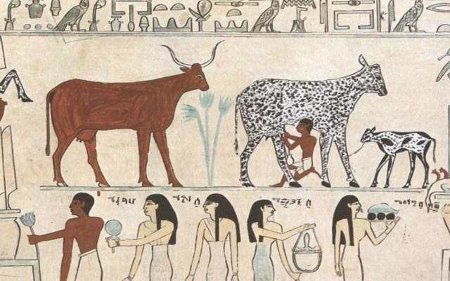 Hallan en Egipto el queso más antiguo del mundo - Foto de Metropolitan Museum of Art