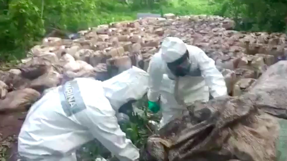 Marinos realizan decomiso histórico de casi 50 toneladas de crystal en Sinaloa
