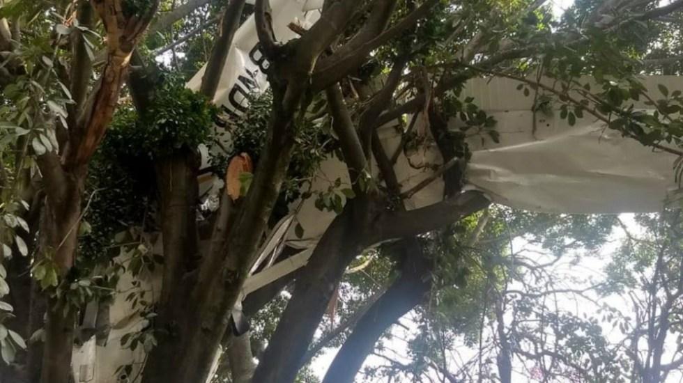 Desplome de avión pequeño en Morelos deja al menos un herido - Foto de La Unión de Morelos
