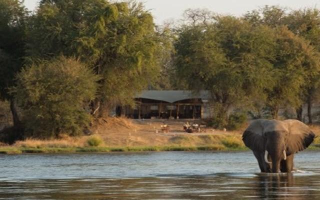 Elefante mata a pisotones a turista en Zimbabue - Parque Nacional Mana Pools. Foto de @YZsafaris