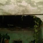 Mujer de la tercera edad lesionada en Aguascalientes por derrumbe de techo - Foto de Centuria Noticias