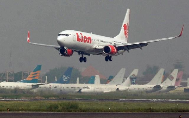 Inspeccionarán todos los Boeing 737MAX8 tras accidente aéreo en Yakarta - demandan a boeing por accidente de lion air