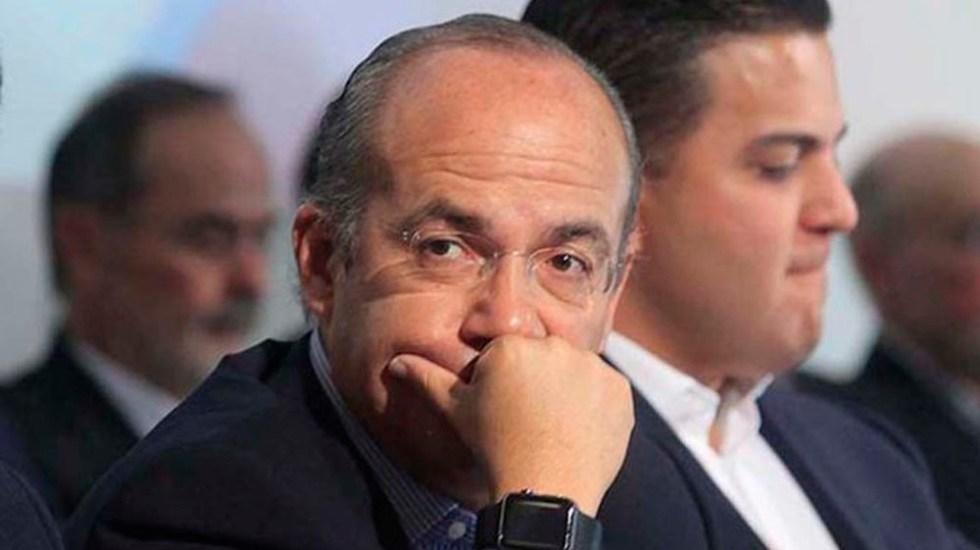Calderón exige explicación al PAN por diputada relacionada con 'El Chapo' - felipe calderon