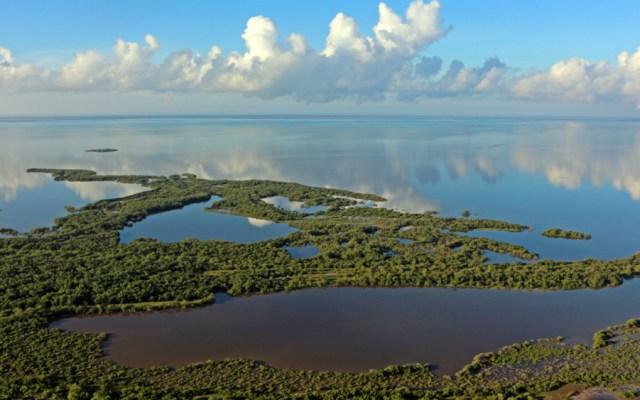 Programa de conservación prohíbe el plástico en Holbox, Quintana Roo - Foto de Semarnat