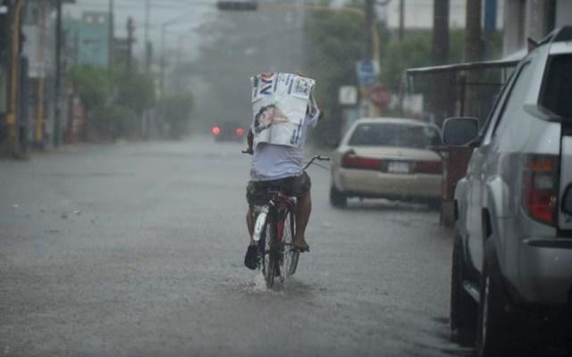 Prevén lluvias fuertes en la Península de Yucatán y sureste del país - Foto de ALFREDO ESTRELLA / AFP