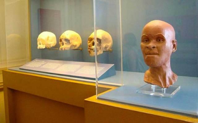 Hallan fragmentos del fósil Luzia bajo escombros del Museo Nacional de Brasil - Foto de Newsinfoco