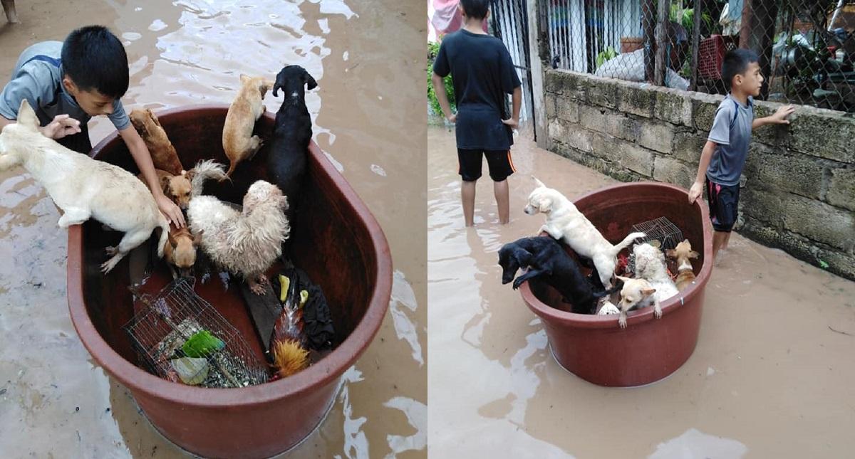 En una tina, Jostyn salvó a perros y aves. Foto de Francisco Barrera García