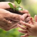 ¿Qué hacer para frenar el cambio climático? - Cinco acciones bastan para ayudar al medio ambiente. Foto de Internet
