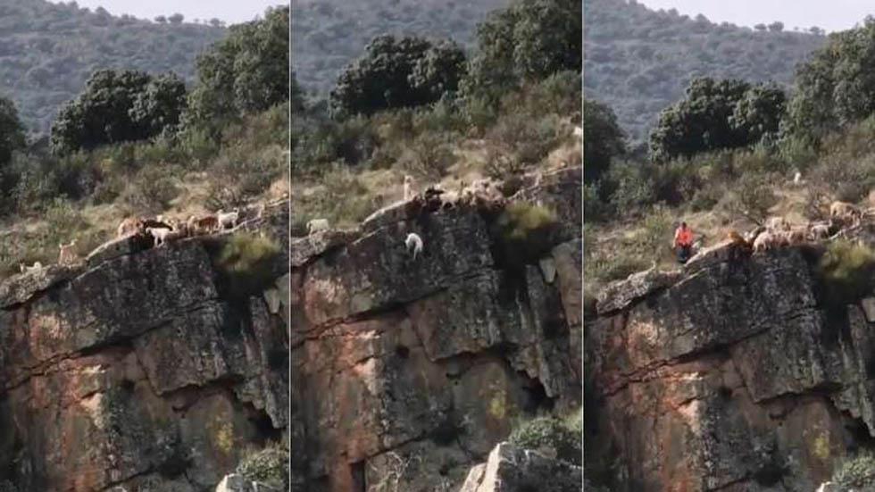 Cacería en Herreruela, España. Captura de pantalla