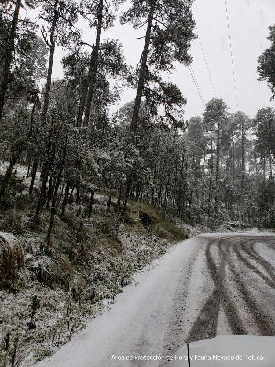 Nevado de Toluca. Foto de @CONANP_mx