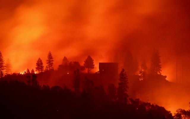 """""""Fue el momento más aterrador de mi vida"""": sobreviviente de incendio en California - Foto de AFP"""