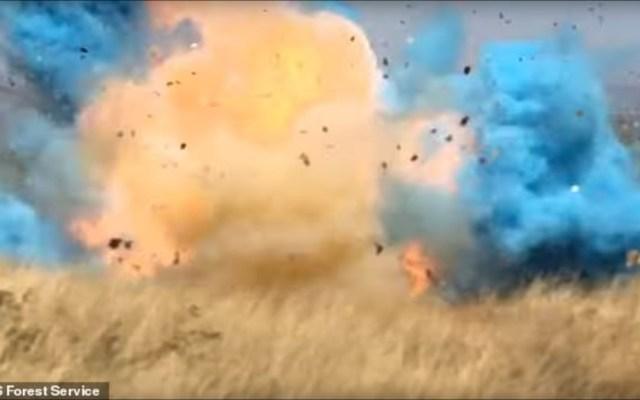 #Video Fiesta termina en incendio forestal en Arizona - incendio arizona
