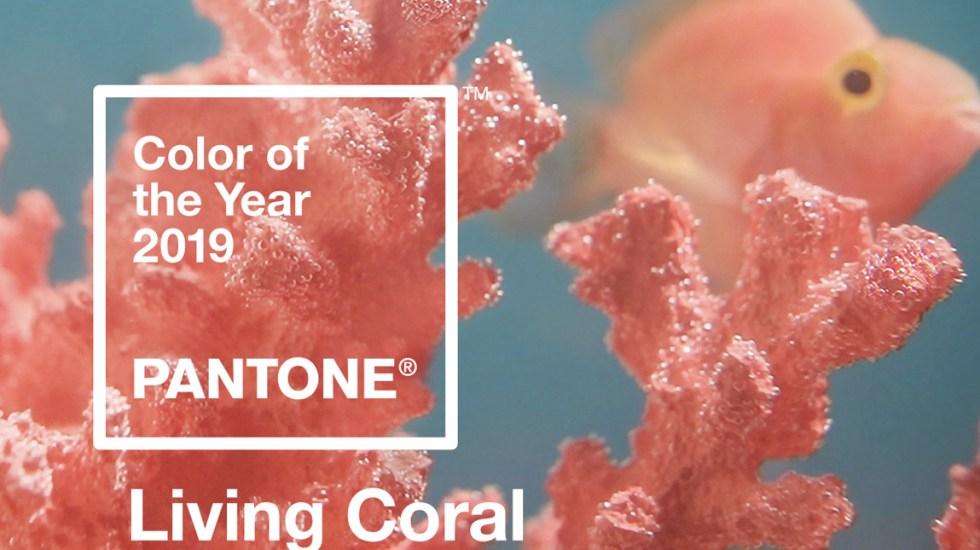 Pantone da a conocer que Living Coral es el color del 2019 - Foto de Pantone