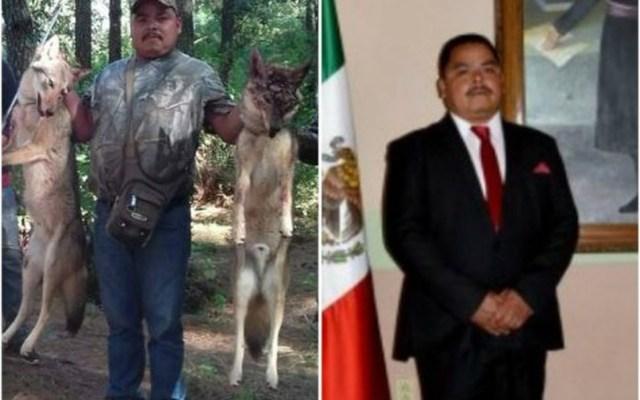 Exhiben a regidor en Michoacán de cazar lobos - Foto de Internet