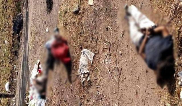 Asesinan a 12 personas en Guanajuato en tres hechos diferentes - Foto de Bruno Noticias