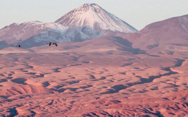 Postales del desierto de Atacama - Foto: Guido Piotrkowski