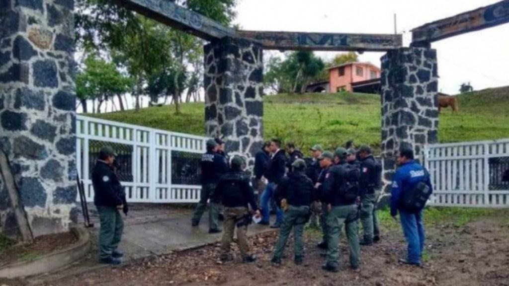 Encuentran reses robadas en rancho de exdiputado en Veracruz - rancho cabezas de ganado exdiputado