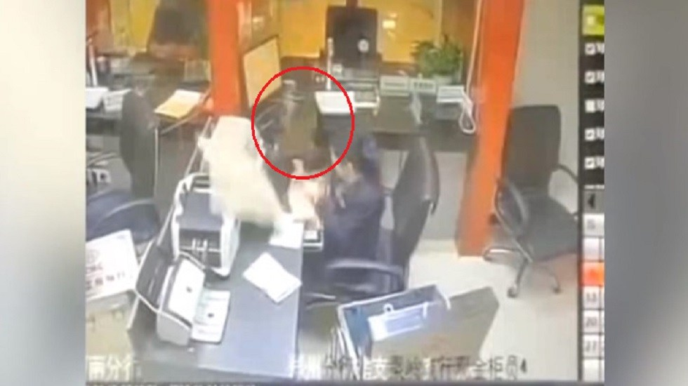#Video Gato le cae del techo a ejecutiva de banco - Momento en que gato cae sobre ejecutiva de banco. Captura de pantalla