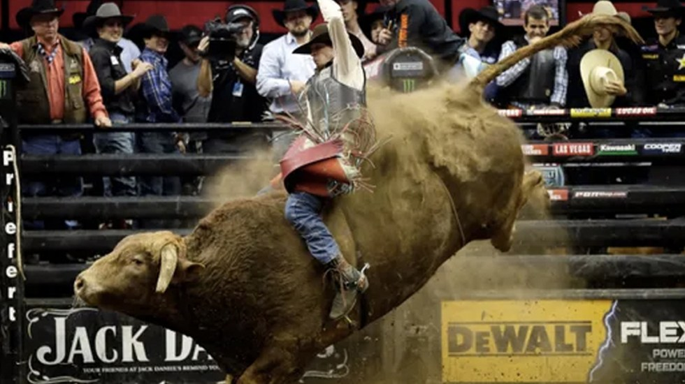 Jinete de toros muere en evento de exhibición en Denver - Foto de USA Today
