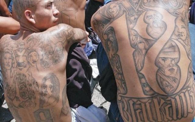 Gobernador de Texas despotrica contra las pandillas - Miembros de pandillas. Foto de Internet