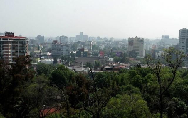 Activan Fase 1 de Contingencia por Ozono en la Megalópolis - Foto de Notimex