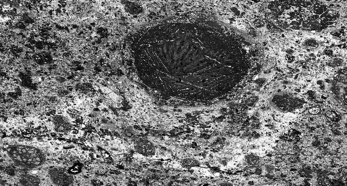 Primera   evidencia   encontrada   de   un   flujo   de   agua   en   un   asteroide, perteneciente  a  la  condrita  carbonácea  Meteorite  Hills  01070. Foto de Josep  M.  Trigo (CSIC/IEEC)