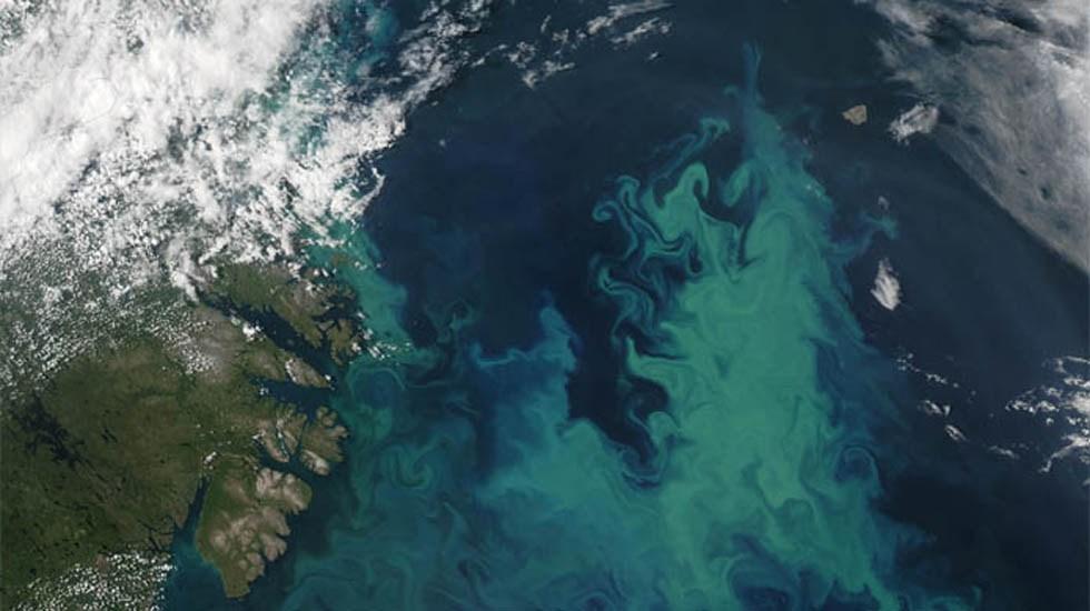 Calentamiento global cambiará el color de los mares - Vista aérea del mar. Foto de Internet