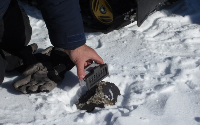 Hallan meteoritos que trajeron agua a la Tierra - Muestras de meteorito en Miller Range,Antártida. Foto de Katherine Joy / ANSMET