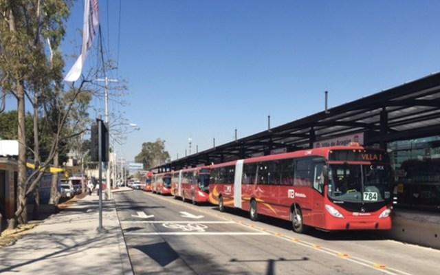Sedema deberá dar cifra de árboles derribados por construcción de Metrobús - Foto de internet