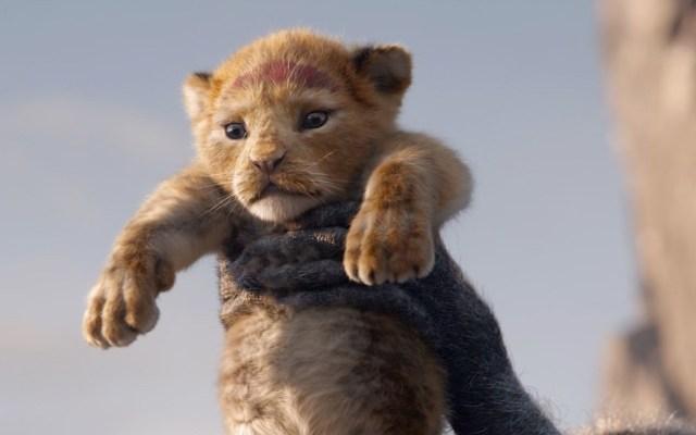#Video Disney presenta nuevo teaser de El rey león - Simba siendo presentado por Rafiki. Foto de @disneylionking