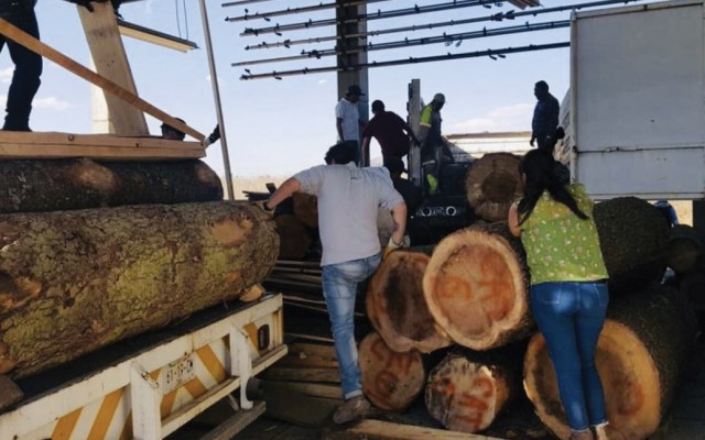 Clausuran 14 depósitos tras operativo contra tala clandestina en El Ajusco - Foto de Claudia Sheinbaum