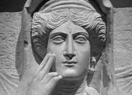 Zenobia - Foto de internet.
