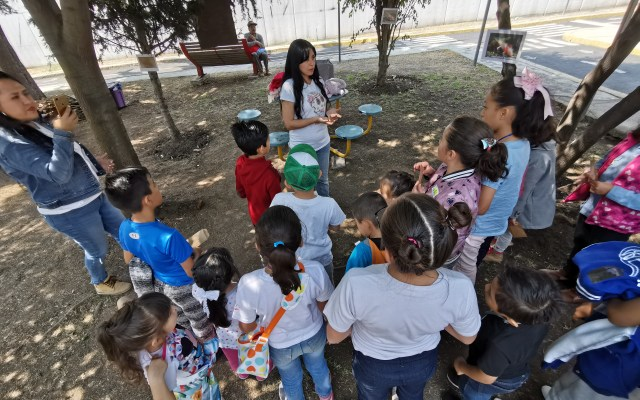 Niños festejan su día aprendiendo a cuidar el medio ambiente - Foto de Carlos Tomasini