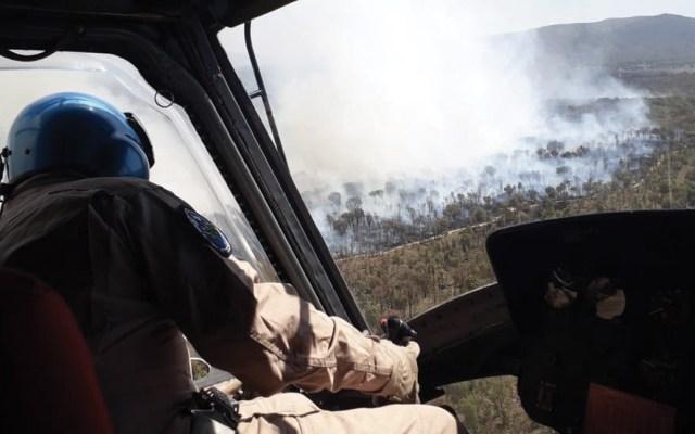 Nuevo incendio afecta al Bosque de la Primavera en Jalisco - Foto de Protección Civil de Jalisco