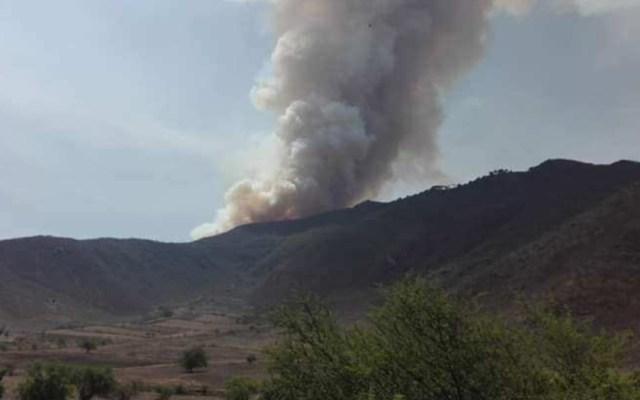 Evacuan a cien personas por incendio forestal en Veracruz - incendio forestal veracruz evacuación