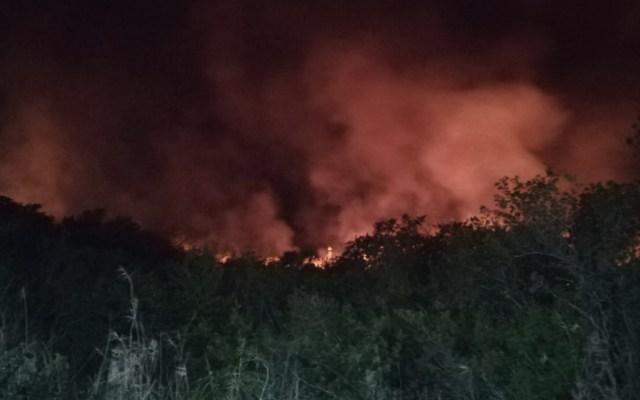 Consume incendio al menos 300 hectáreas en Biosfera de los Petenes - Foto de @CONAFOR