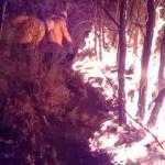 Controlan 70 por ciento del incendio en Valle de Bravo - incendio valle de bravo