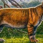 Descubren restos de uno de los mayores mamíferos terrestres en Kenia - Foto de NatGeo