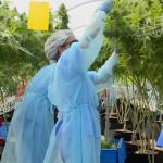 Primera exportación de mariguana medicinal uruguaya lista para despegar - Foto de AFP TV