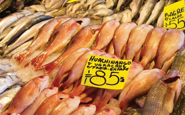 Profeco publica lista de precios de pescados - Foto de Notimex