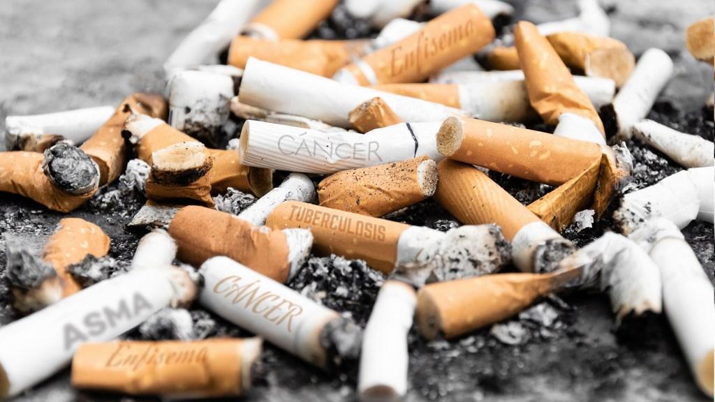 Jalisco ocupa el segundo lugar en fumadores pasivos - Colillas de cigarro. Foto de Secretaría de Salud de Jalisco