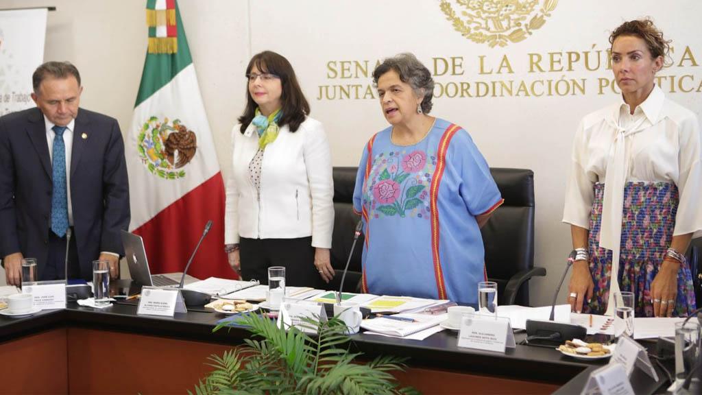 Medios distorsionan la realidad del Conacyt: Álvarez-Buylla - Conacyt María Elena Álvarez-Buylla Roces