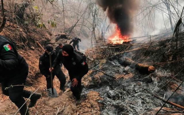 Más de 200 personas combaten incendio en Chilpancingo - incendio forestal acapulco