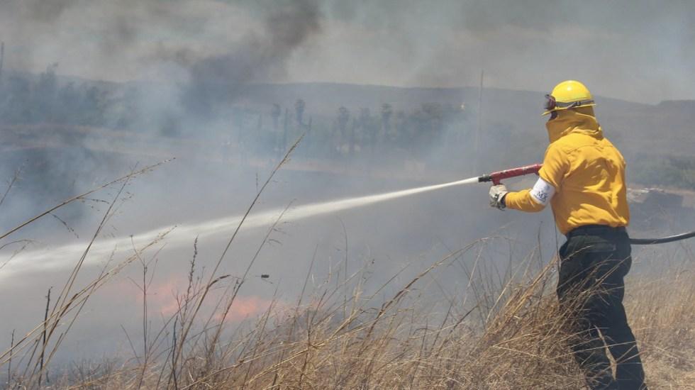 Al menos seis nuevos incendios forestales en Oaxaca - Foto de Conafor