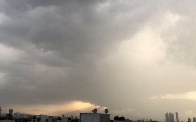 Lluvia y viento tiran cuatro árboles y una lona en Ciudad de México - Foto de @mmora01