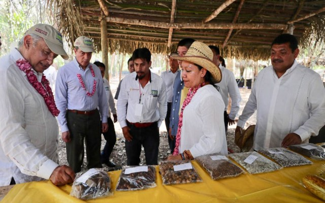 López Obrador concluye este domingo gira por el sureste mexicano - López Obrador en Chiapas. Foto de lopezobrador.org.mx