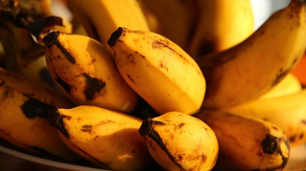 México y China firman acuerdo para exportar plátano - Foto Fabrizio Frigeni para Unsplash