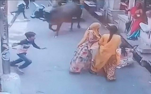 #Video Mujer deja caer a bebé durante ataque de toro - toro mujeres india