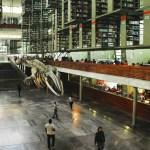 Este domingo abrirá instalaciones Biblioteca Vasconcelos - Foto de Biblioteca Vasconcelos